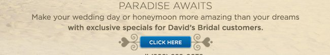 PARADISE AWAITS                  Make your wedding day or honeymoon more amazing than your dreamswith exclusive specials for David's Bridal customers.                  CLICK HERE