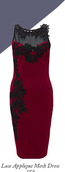 Lace Applique Mesh Dress