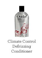 Climate Control Defrizzing Conditioner