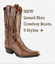 Mens Lizard Skin Boots on Sale