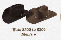 Shop Mens Hats 200 to 300