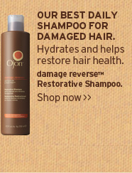 OUR  BEST DAILY SHAMPOO FOR DAMAGED HAIR Hydrates and helps restore hair  health damage reverse Restorative Shampoo SHOP NOW