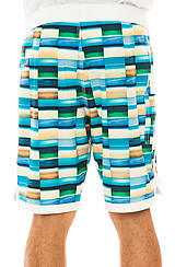 The Fuller Boardshorts