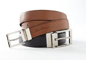 The Reversible Belt