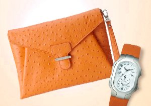 Color Shop: Orange Accessories