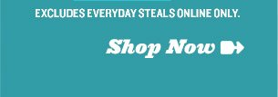 EXCLUDES EVERYDAY STEALS ONLINE ONLY. Shop Now