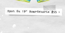 "Spot On 19"" Boardshorts $55"