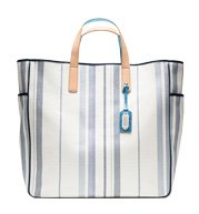 3-carry-on-tote