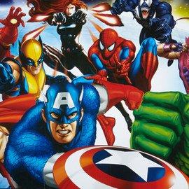 Marvel & DC Comics: Gear