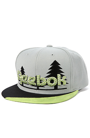 Click to Shop Reebok the Trees Snapback in Gray