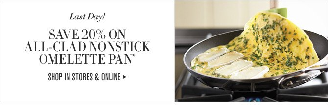 Last Day! SAVE 20% ON ALL-CLAD NONSTICK OMELETTE PAN* -- SHOP IN STORES & ONLINE