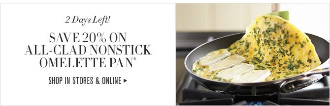 2 Days Left! - SAVE 20% ON ALL-CLAD NONSTICK OMELETTE PAN* - SHOP IN STORES & ONLINE