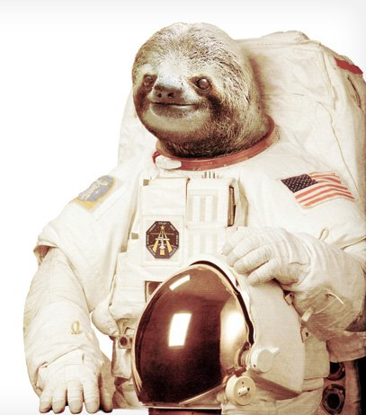 New Design - Astronaut Sloth - Design by Bakus / Maia Porto, Portugal