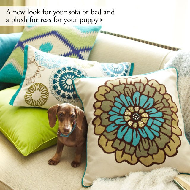 A new look for your sofa or bed and a plush fortress for your puppy