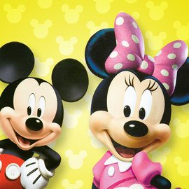 Mickey & Minnie Mouse Collection