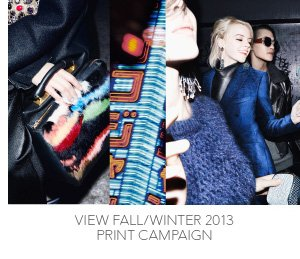 View Print Campaign