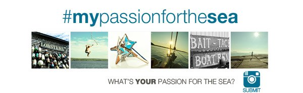 WHAT'S YOUR PASSION FOR THE SEA? | #mypassionforthesea | SUBMIT