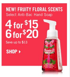 Anti-Bac Hand Soaps – 4 for $15