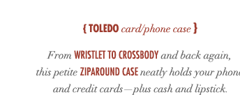 Toledo Card Phone Case