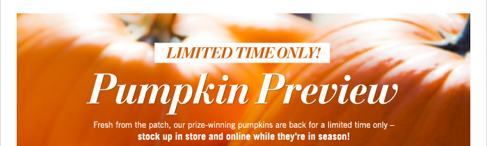 $6 Mini Decorative Pumpkin Candle with any Purchase