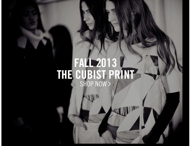 FALL 2013 - THE CUBIST PRINT - SHOP NOW >