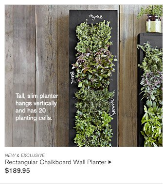 NEW & EXCLUSIVE -- Tall, slim planter hangs vertically and has 20 planting cells. -- Rectangular Chalkboard Wall Planter, $189.95
