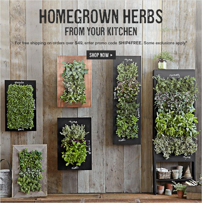 HOMEGROWN HERBS FROM YOUR KITCHEN -- For free shipping on orders over $49, enter promo code SHIP4FREE. Some exclusions apply* -- SHOP NOW