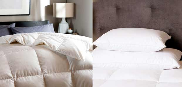 Out Like a Light: Dreamy Mattress Toppers & More