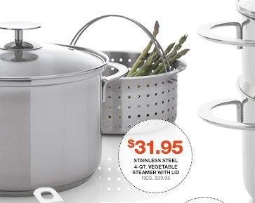Stainless Steel 4-Qt. Vegetable Steamer  with Lid $31.95 Reg. $39.95