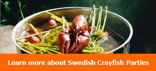 Learn more about Swedish Crayfish Parties