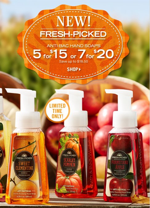 Anti-Bac Hand Soaps – $5 for $15