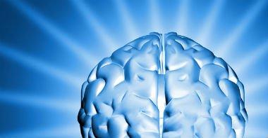 Brain-Power_featured_crop1-1_0