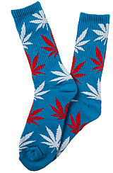 The Plantlife Socks in Blue and Red