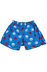 The Plantlife Boxers in Blue and Red