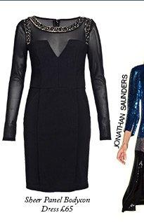 Sheer Panel Bodycon Dress