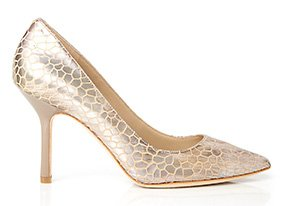 Polished_pumps_148878_hero_8-9-13_hep_two_up
