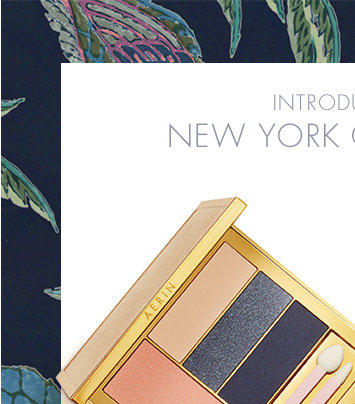 INTRODUCING: NEW YORK CITY COLOR