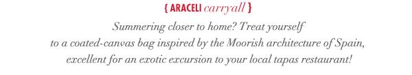 Arceli Carryall