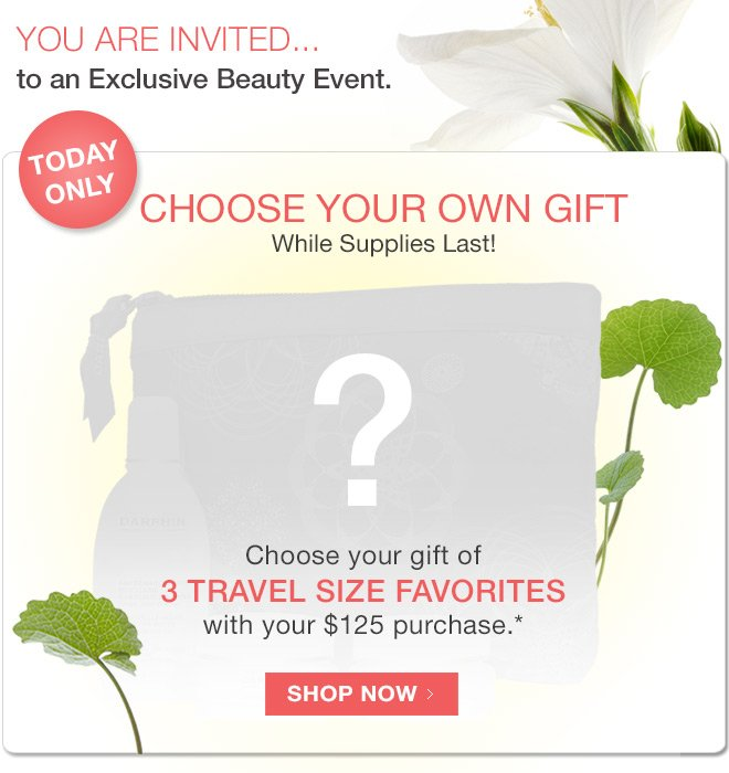 Choose your gift - 3 travel size favorites