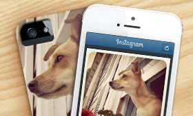 Turn Instagram and Google Drive photos into creations!