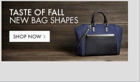 TASTE OF FALL NEW BAG SHAPES