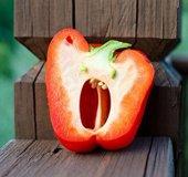scared pepper_NLsm