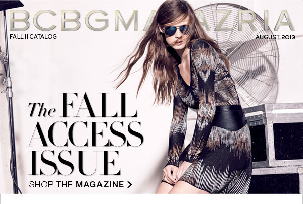 THE FALL ACCESS ISSUE