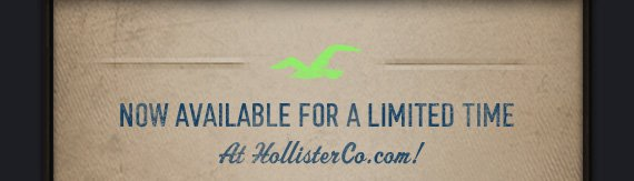 NOW AVAILABLE FOR A LIMITED TIME AT  HOLLISTERCO.COM!