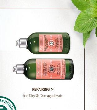 Repairing for Dry & Damaged Hair