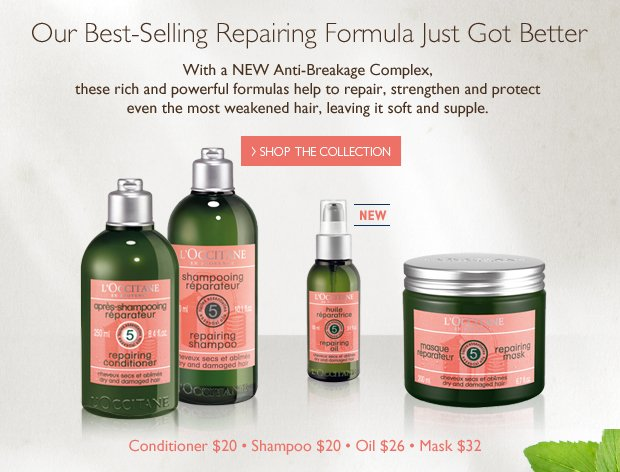 Our Best-Selling Repairing Formula Just Got Better