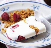 Frozen Yogurt-Berry Bar_NLsm