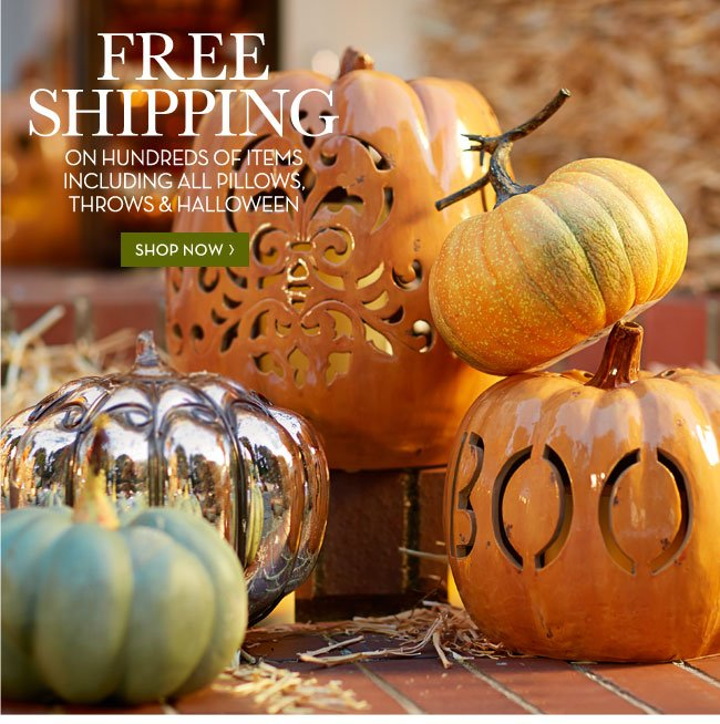 FREE SHIPPING ON HUNDREDS OF ITEMS INCLUDING ALL PILLOWS, THROWS & HALLOWEEN - SHOP NOW