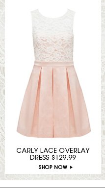 Carly Lace Overlay Dress
