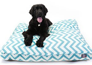 Comfy & Colorful: Pet Beds